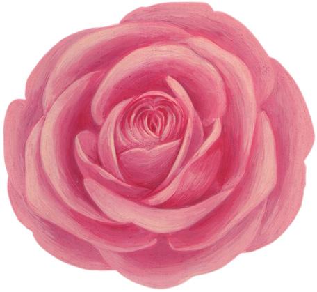 芦屋のJacques Deco(ジャックデコ)のバラ